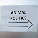 animal-politics_thumb